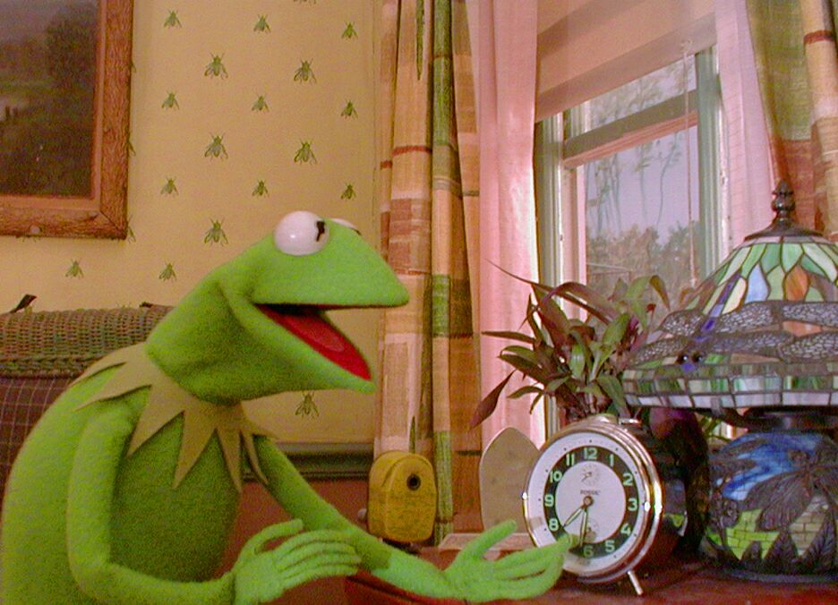 Kermit-the-Frog-the-muppets-121867_936_676