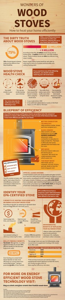Wood Burning Stove Infographic