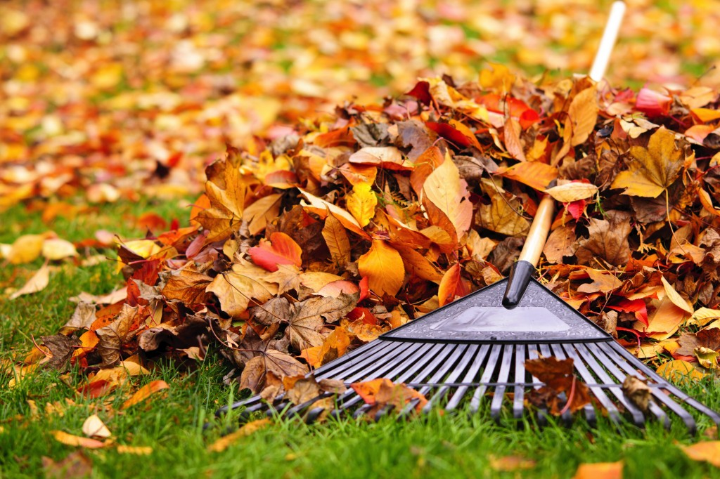 HomeZada Maintenance Tip: Create a compost pile for your leaves