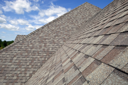 HomeZada Remodel Tip New Roof