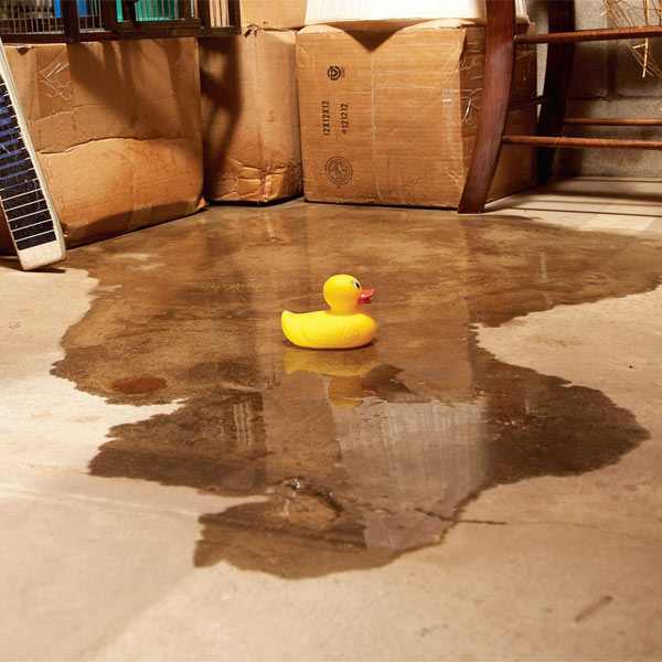 Spring Showers Bring Wet Basements
