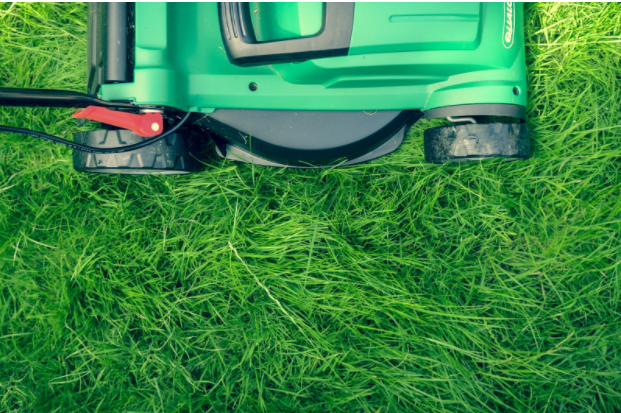 How to Cut Lawn Care Costs This Summer