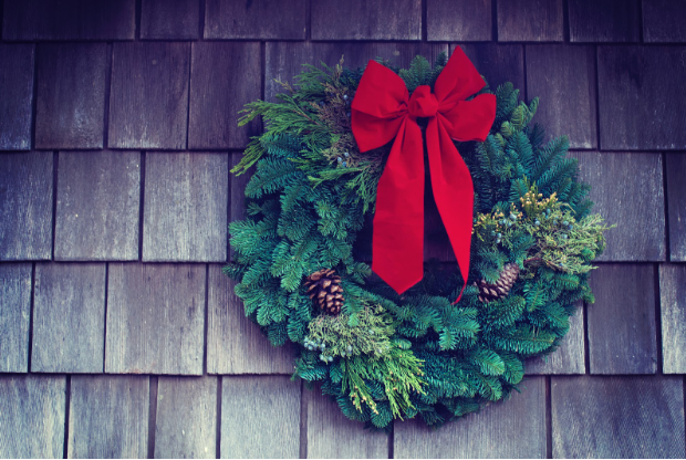 How To Grinch Proof Your Christmas Decorations Zen Of Zada
